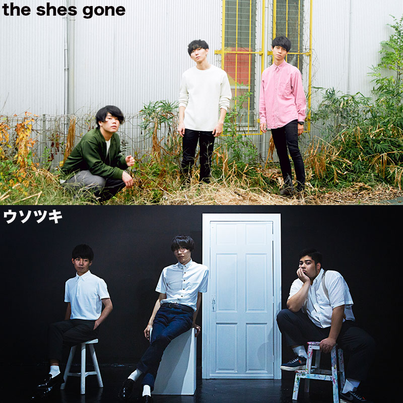 MORE TOUR 2019<br /> the shes gone / ウソツキ